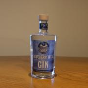 BlueBerryHill_Gin