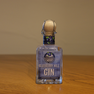 BlueBerryHill_Gin_klein